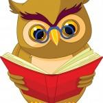 b1_owl_001