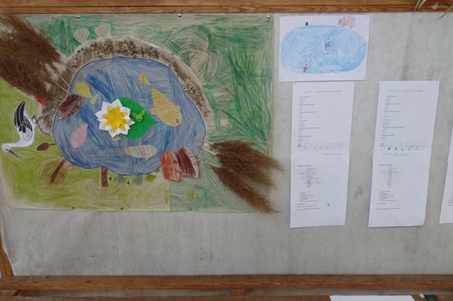 Víz Világnapja - Projektnap 2014 (15)